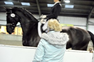 Anita Darken Dressage Coaching